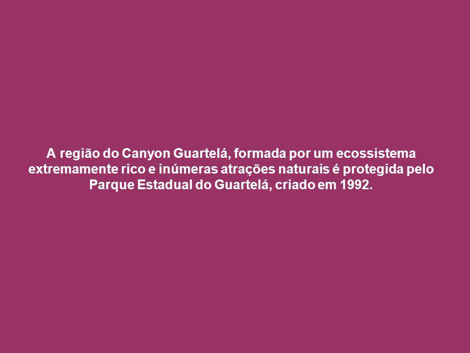 A região do Canyon Guartelá, formada por um ecossistema extremamente rico e inúmeras atrações naturais é protegida pelo Parque Estadual do Guartelá, criado em 1992.