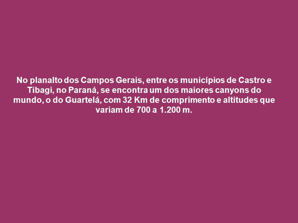 No planalto dos Campos Gerais, entre os municípios de Castro e Tibagi, no Paraná, se encontra um dos maiores canyons do mundo, o do Guartelá, com 32 Km de comprimento e altitudes que variam de 700 a 1.200 m.