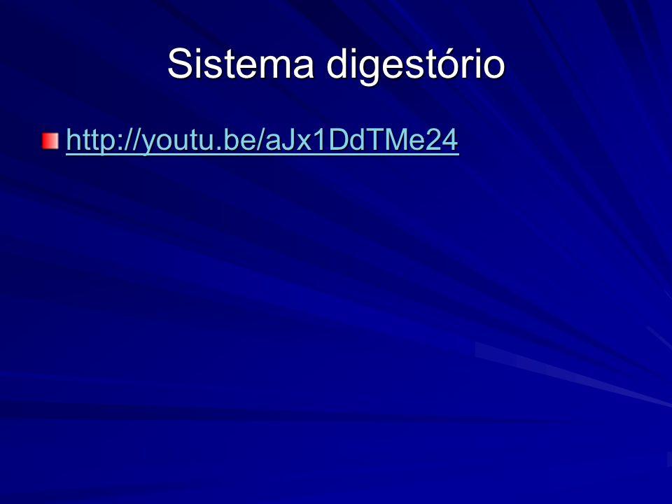 Sistema digestório http://youtu.be/aJx1DdTMe24