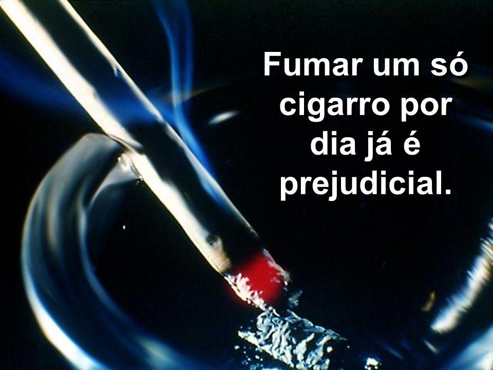 Fumar um só cigarro por dia já é prejudicial.