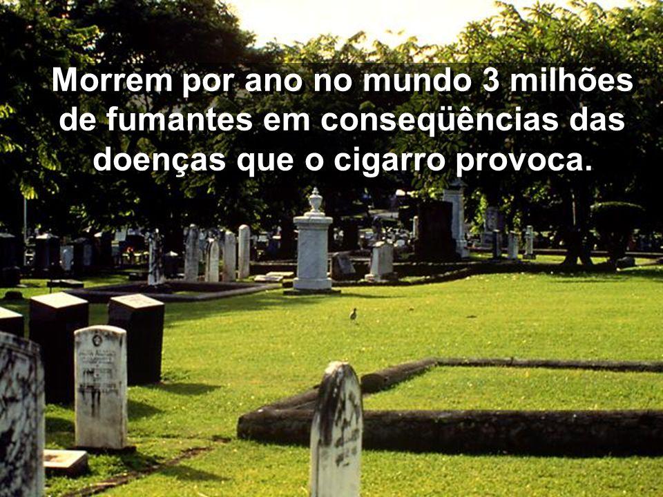 Morrem por ano no mundo 3 milhões de fumantes em conseqüências das doenças que o cigarro provoca.