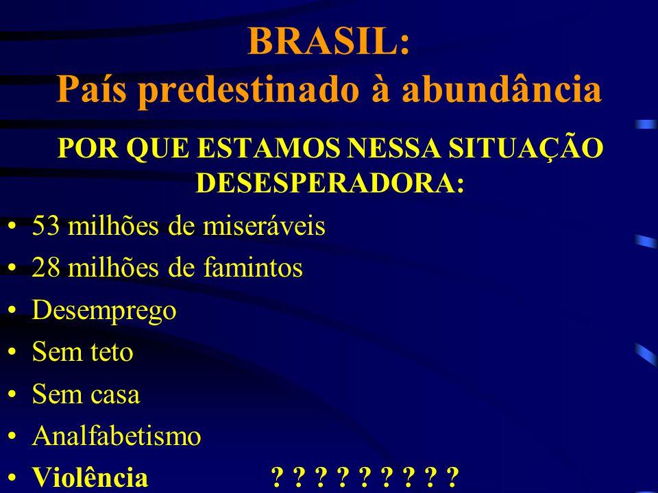 BRASIL: País predestinado à abundância