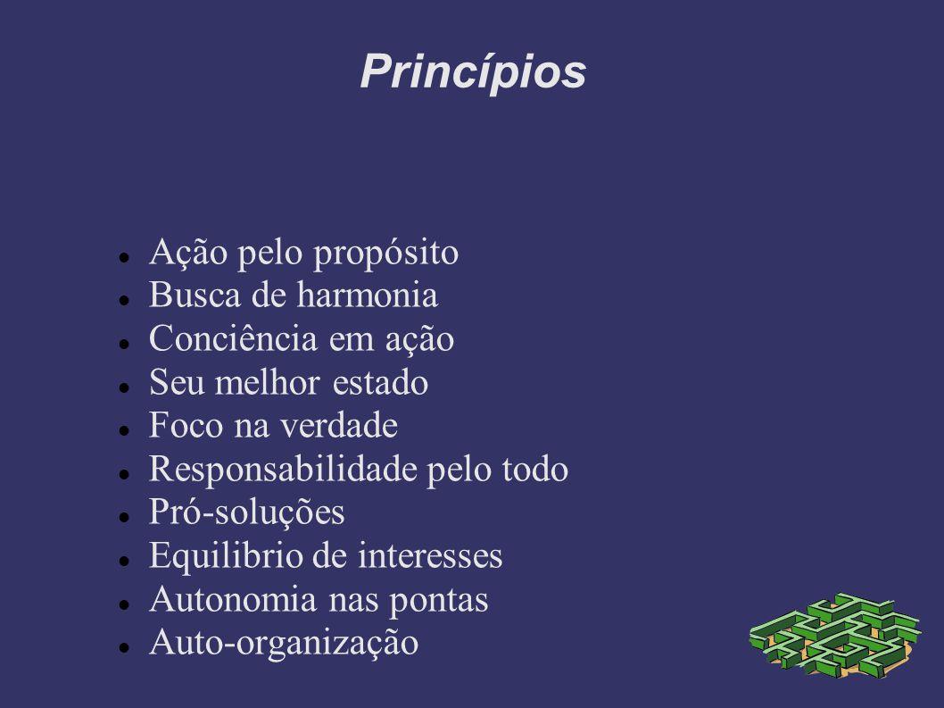 Princípios Ação pelo propósito Busca de harmonia Conciência em ação