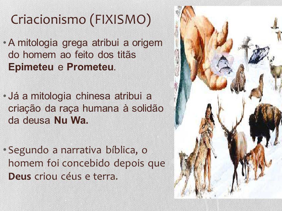 Criacionismo (FIXISMO)