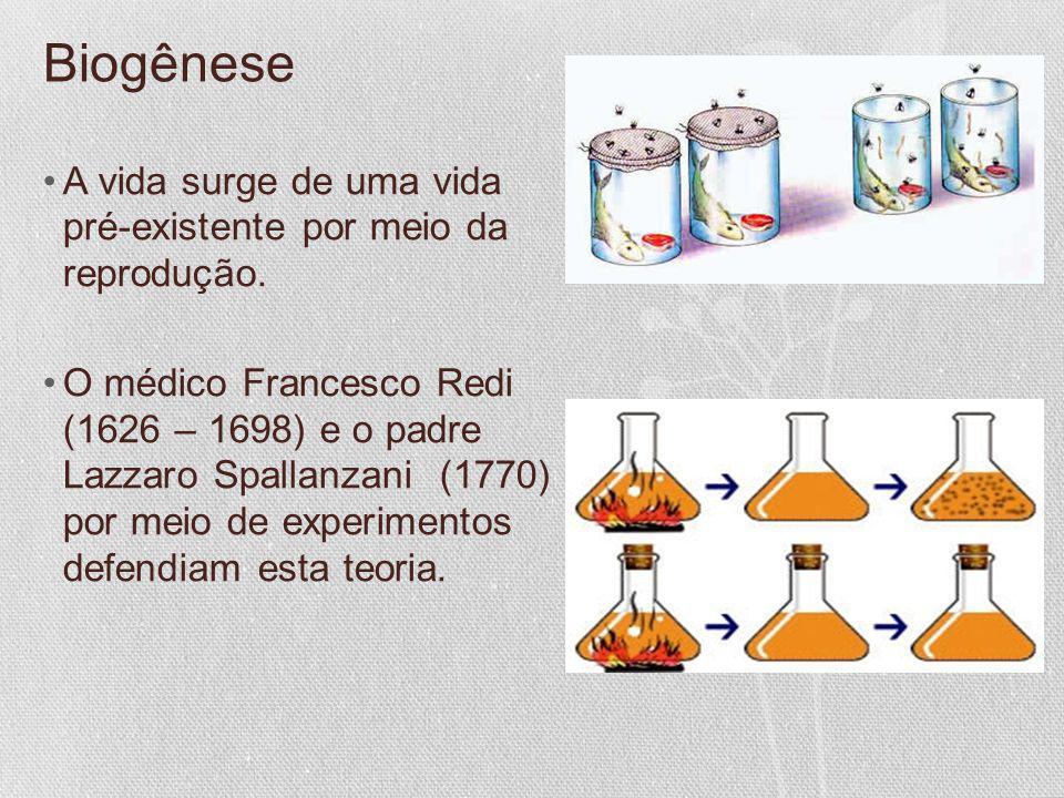 Biogênese A vida surge de uma vida pré-existente por meio da reprodução.