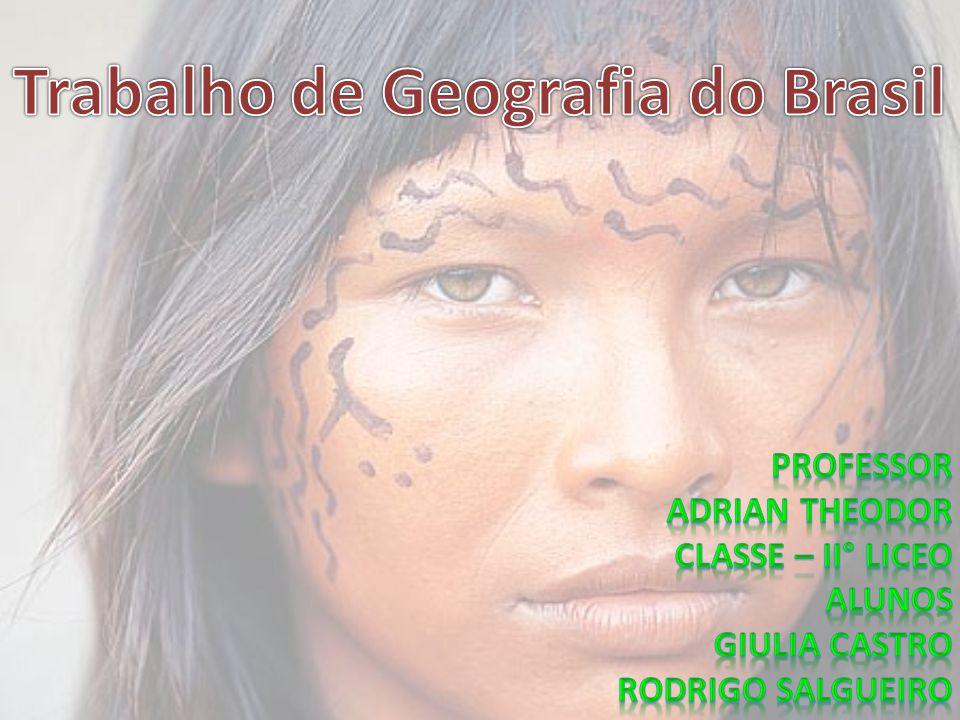 Trabalho de Geografia do Brasil