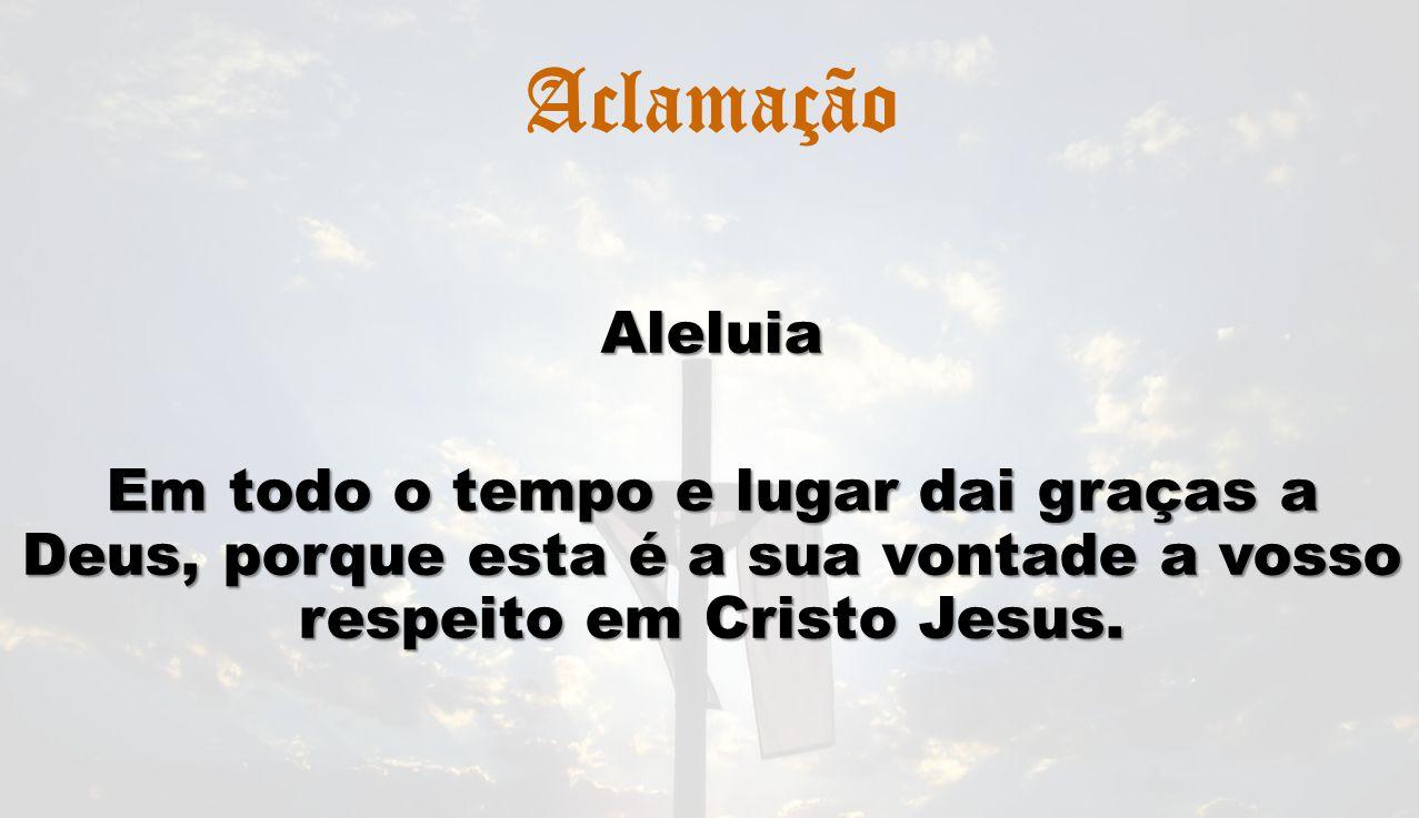 Aclamação Aleluia.