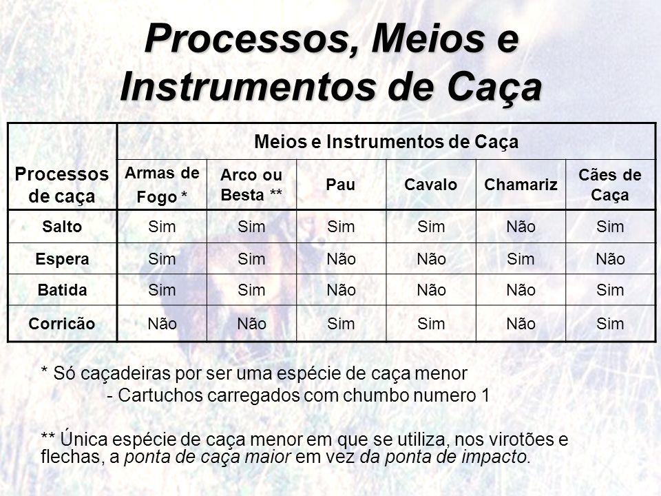 Processos, Meios e Instrumentos de Caça