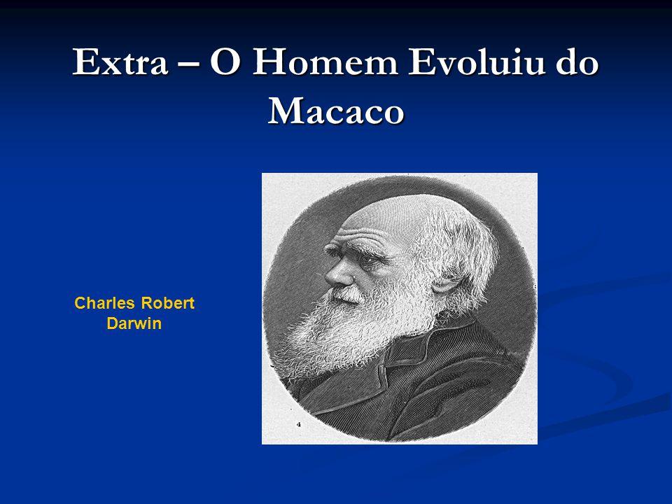 Extra – O Homem Evoluiu do Macaco