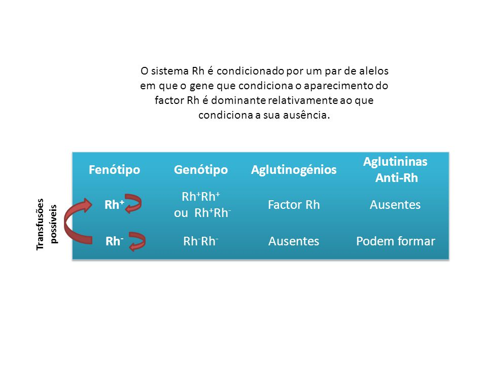 Fenótipo Genótipo Aglutinogénios Aglutininas Anti-Rh Rh+ Rh-