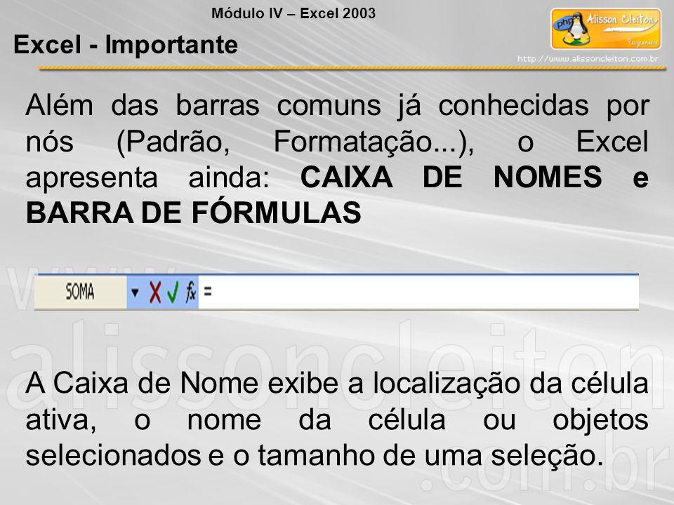 Módulo IV – Excel 2003 Excel - Importante.