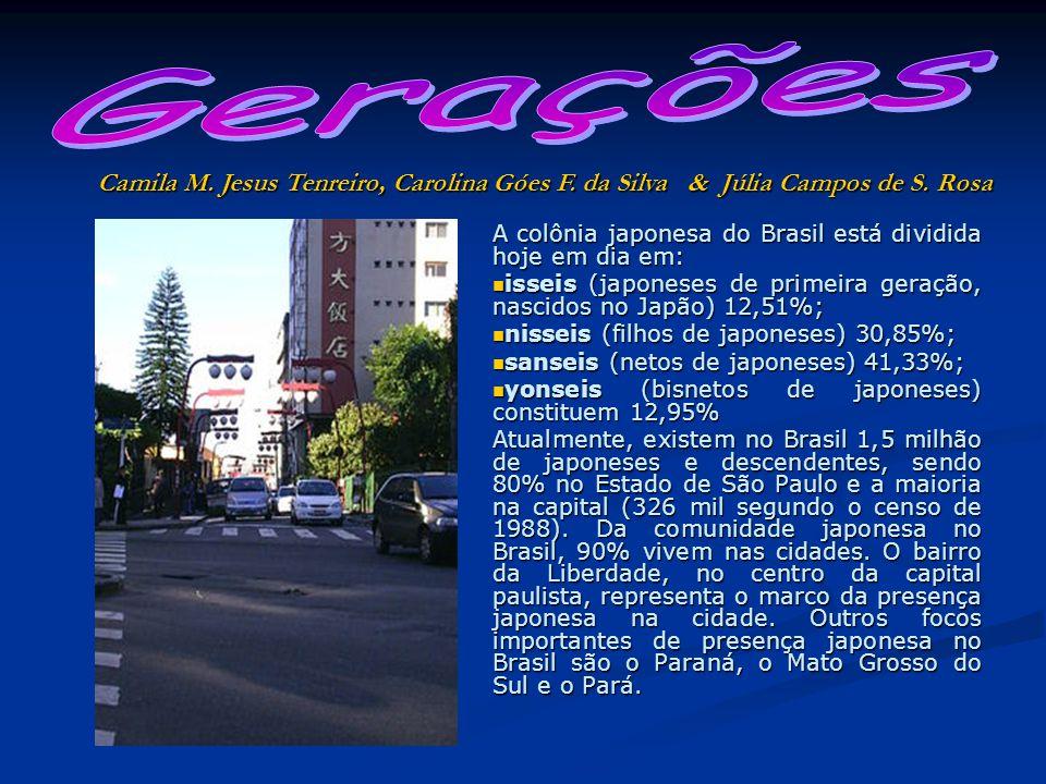 Gerações Camila M. Jesus Tenreiro, Carolina Góes F. da Silva & Júlia Campos de S. Rosa.
