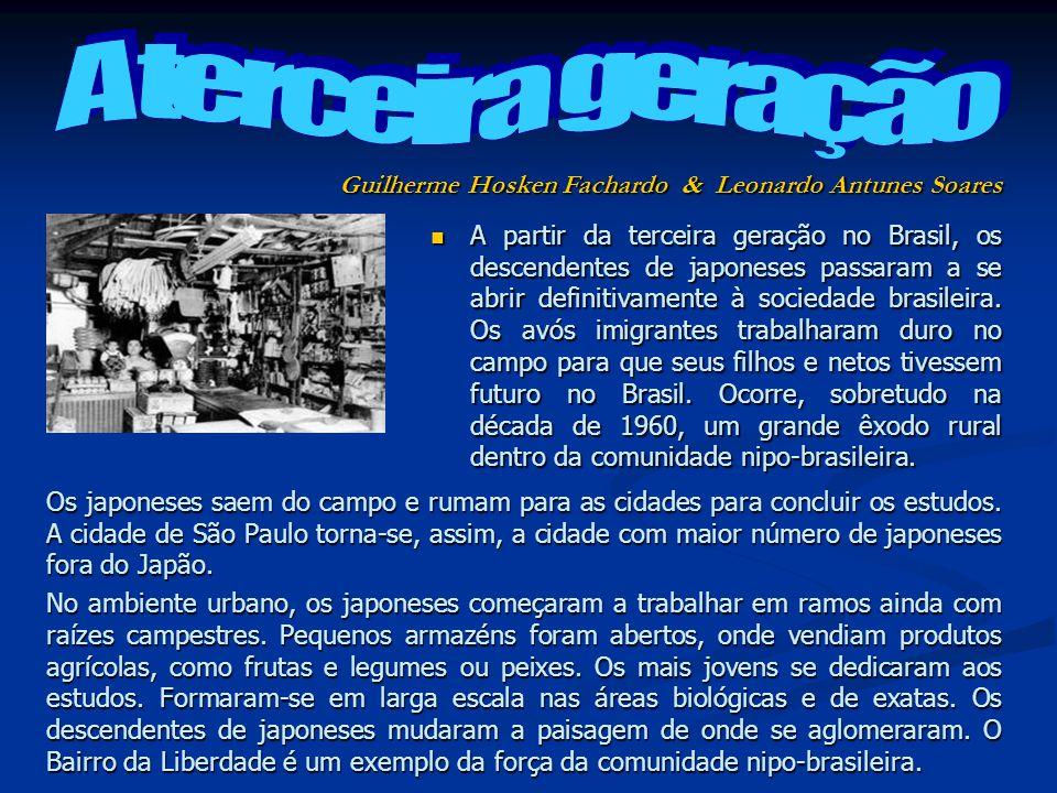 A terceira geração Guilherme Hosken Fachardo & Leonardo Antunes Soares