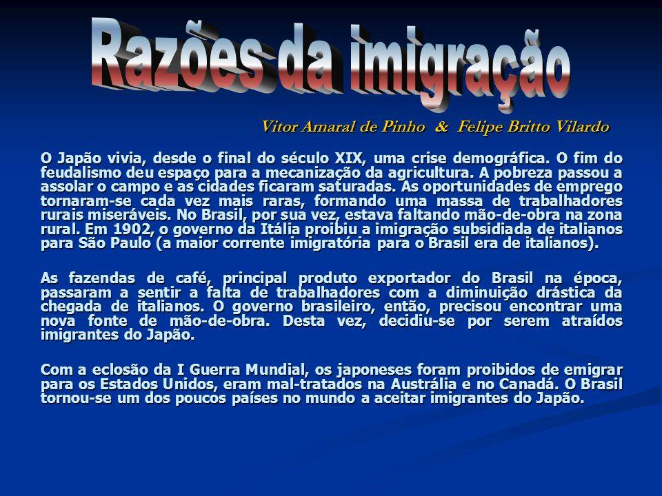 Razões da imigração Vitor Amaral de Pinho & Felipe Britto Vilardo