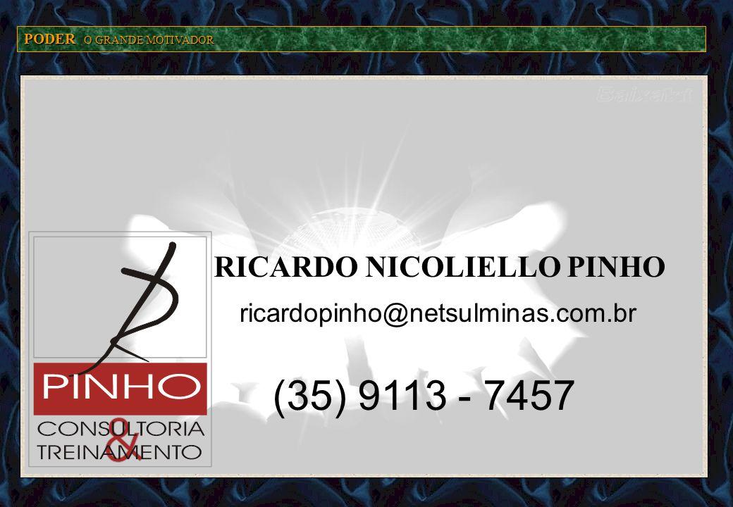 RICARDO NICOLIELLO PINHO