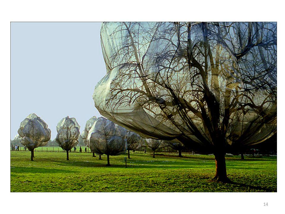 http://www.fotoclubef508.com/blog/wp-content/uploads/Copia-de-jeanne3.jpg