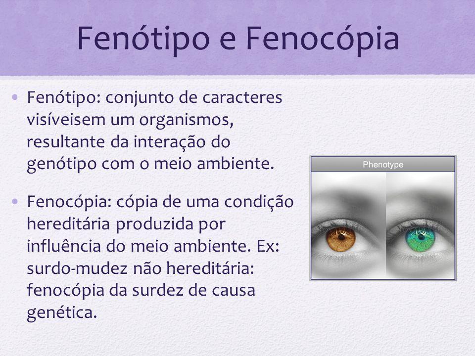 Fenótipo e Fenocópia Fenótipo: conjunto de caracteres visíveisem um organismos, resultante da interação do genótipo com o meio ambiente.