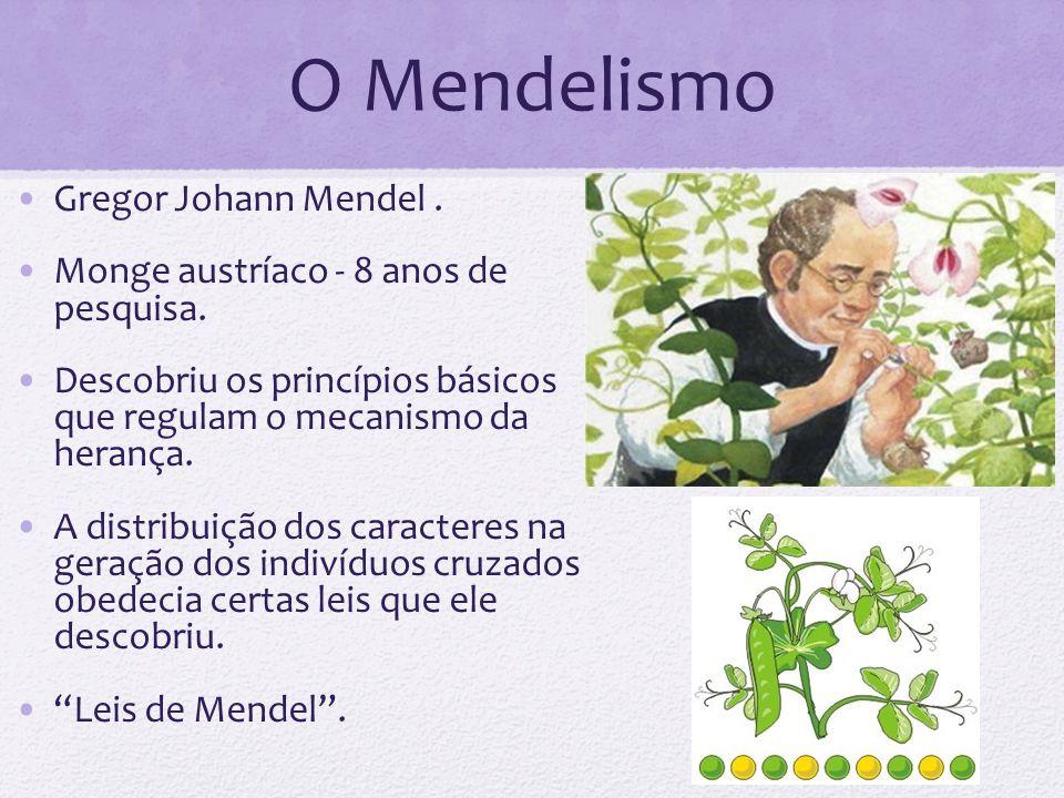 O Mendelismo Gregor Johann Mendel .