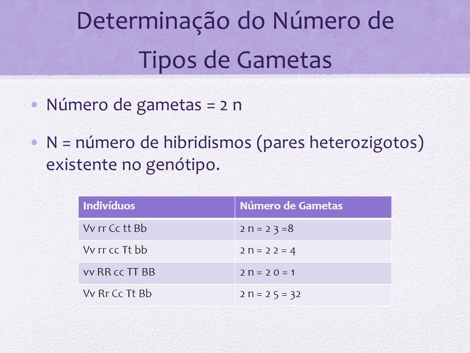 Determinação do Número de Tipos de Gametas