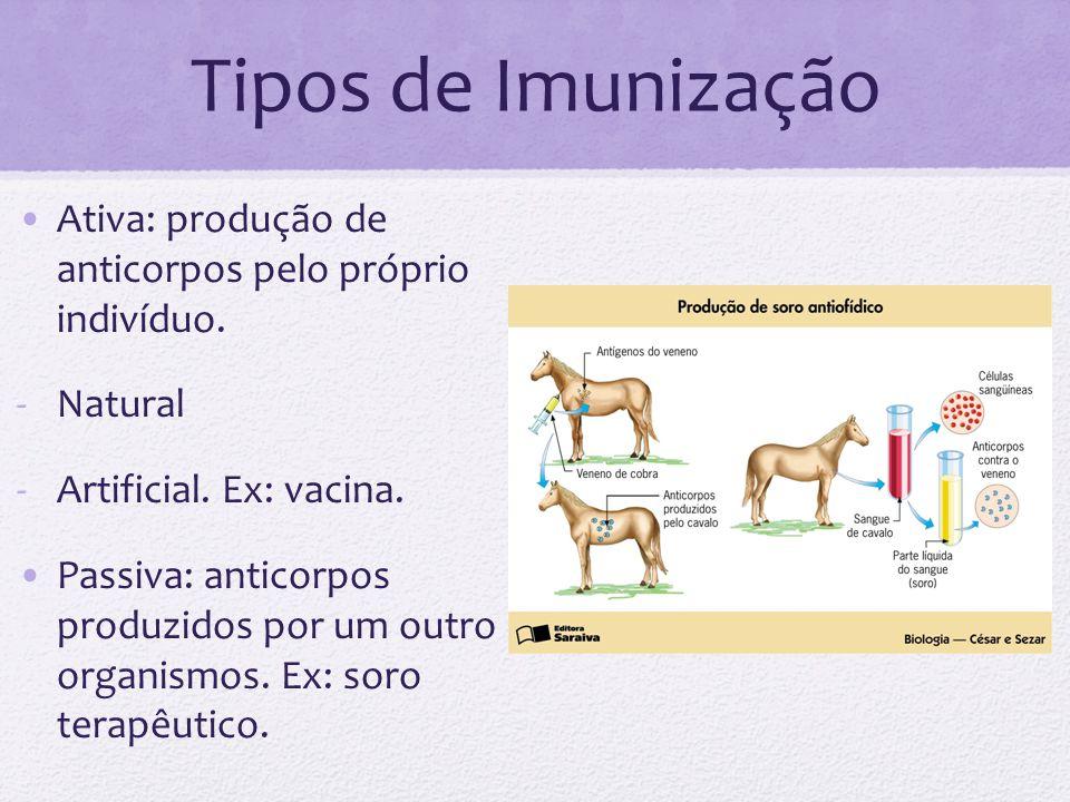 Tipos de Imunização Ativa: produção de anticorpos pelo próprio indivíduo. Natural. Artificial. Ex: vacina.