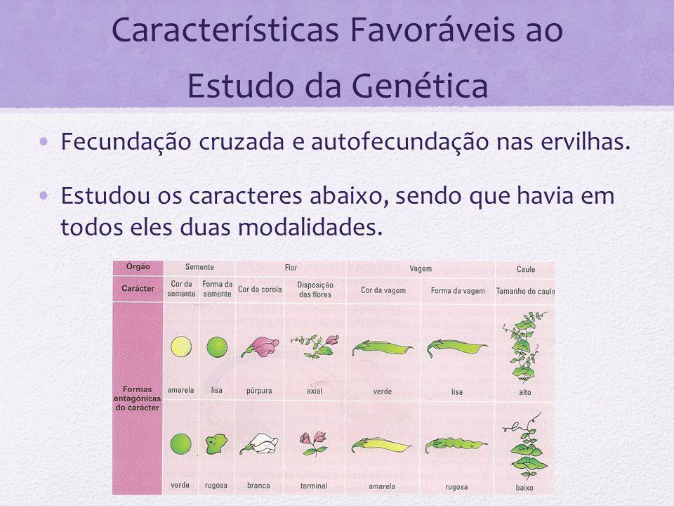 Características Favoráveis ao Estudo da Genética