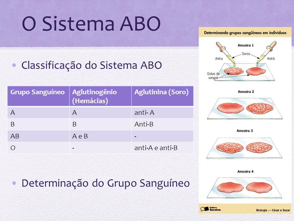 O Sistema ABO Classificação do Sistema ABO
