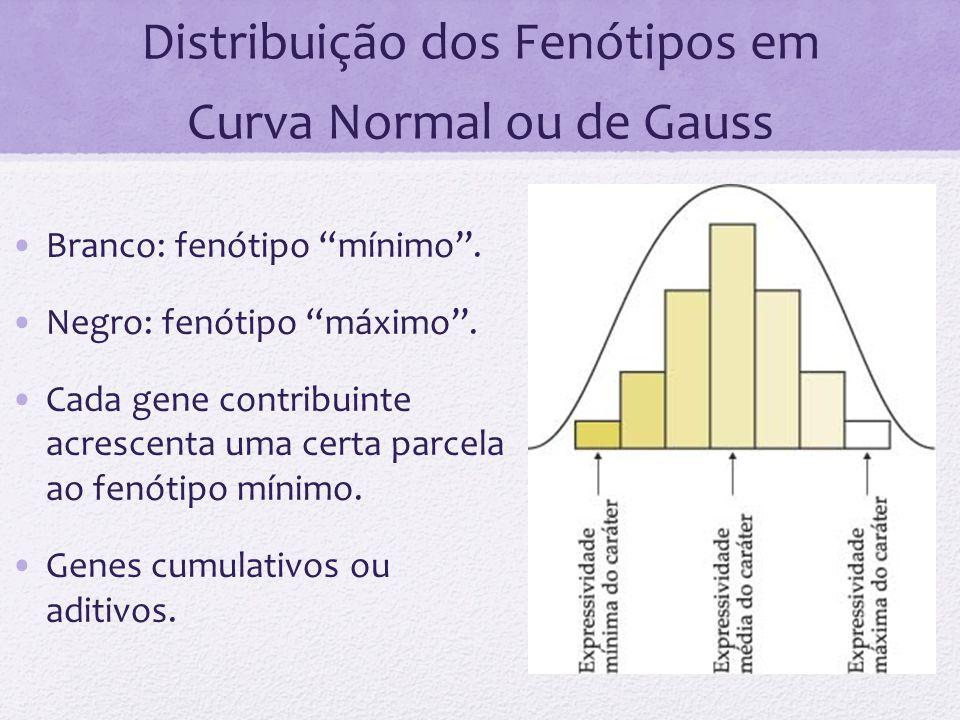 Distribuição dos Fenótipos em Curva Normal ou de Gauss