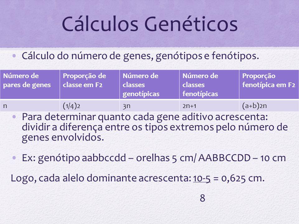 Cálculos Genéticos Cálculo do número de genes, genótipos e fenótipos.