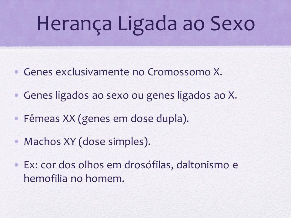 Herança Ligada ao Sexo Genes exclusivamente no Cromossomo X.