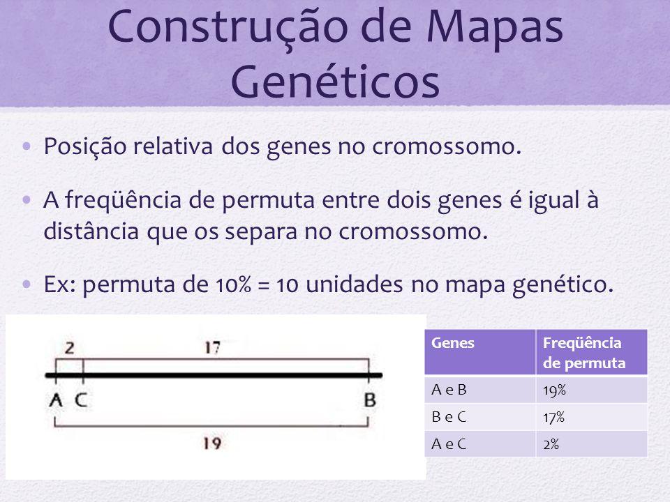 Construção de Mapas Genéticos
