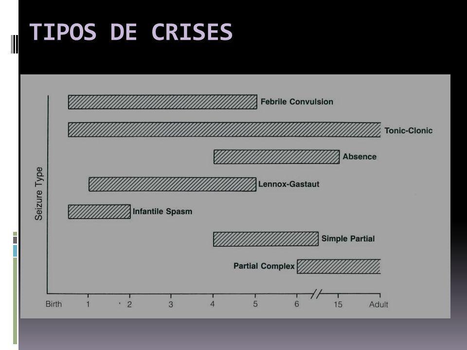 TIPOS DE CRISES