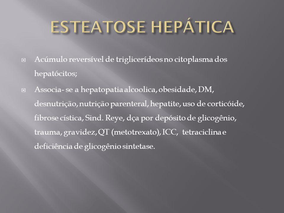 ESTEATOSE HEPÁTICA Acúmulo reversível de triglicerídeos no citoplasma dos hepatócitos;