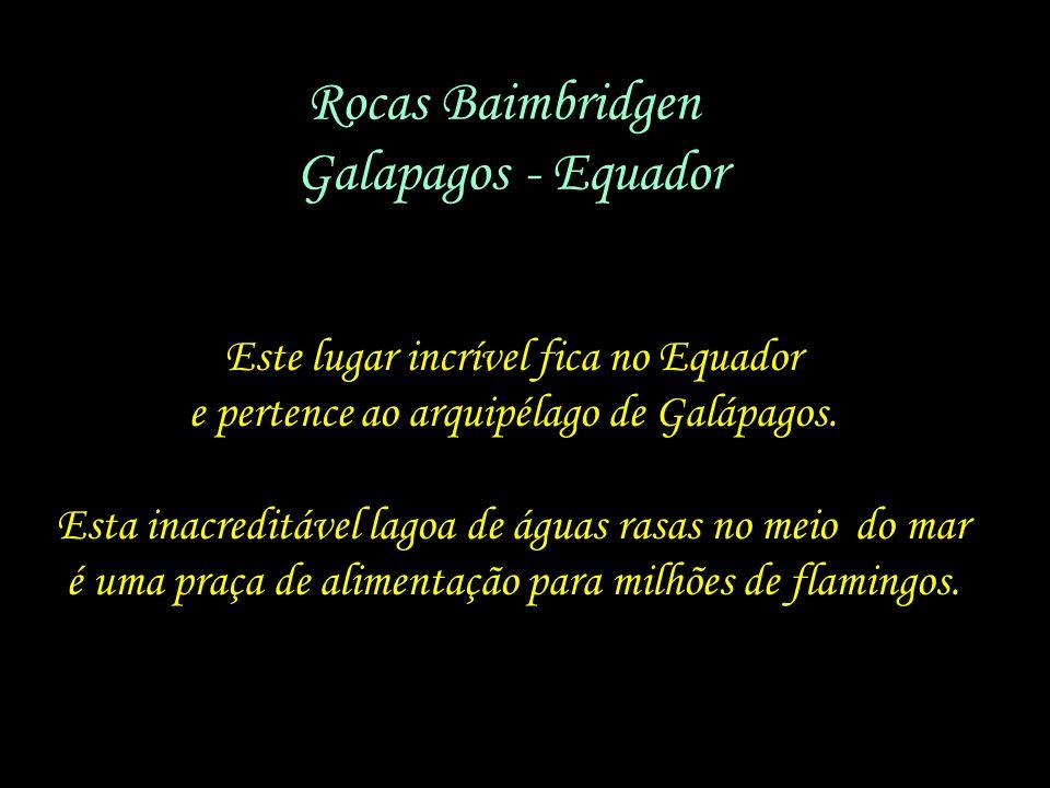 Rocas Baimbridgen Galapagos - Equador