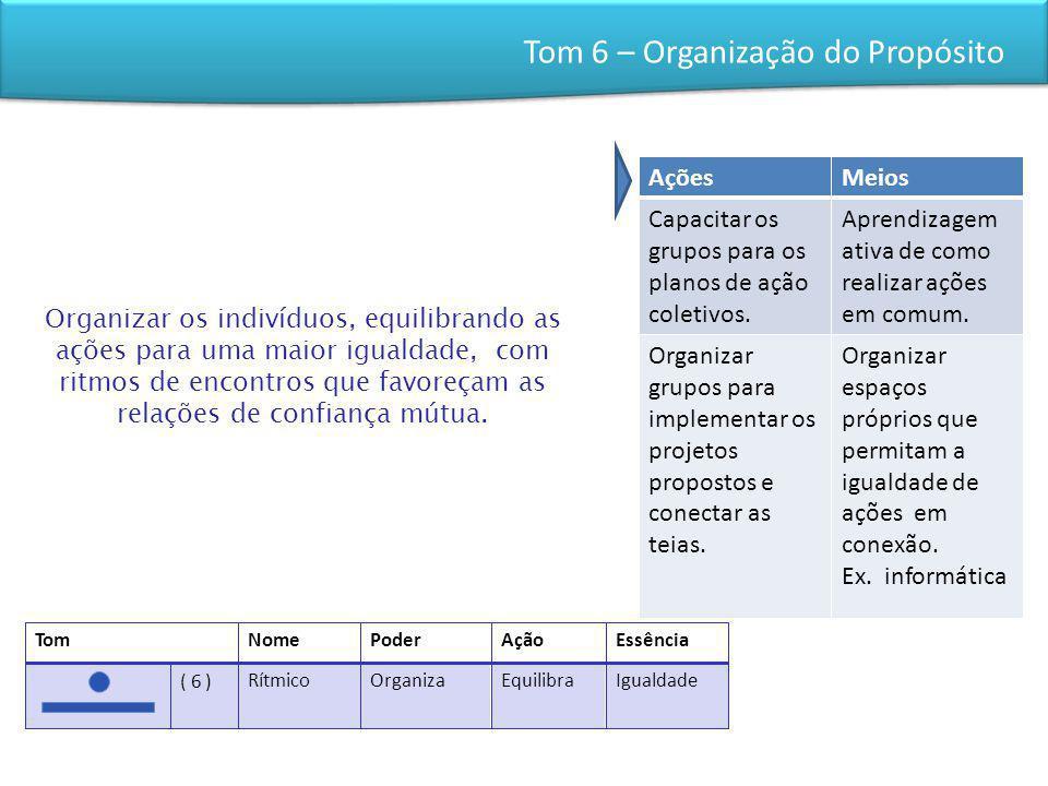 Tom 6 – Organização do Propósito
