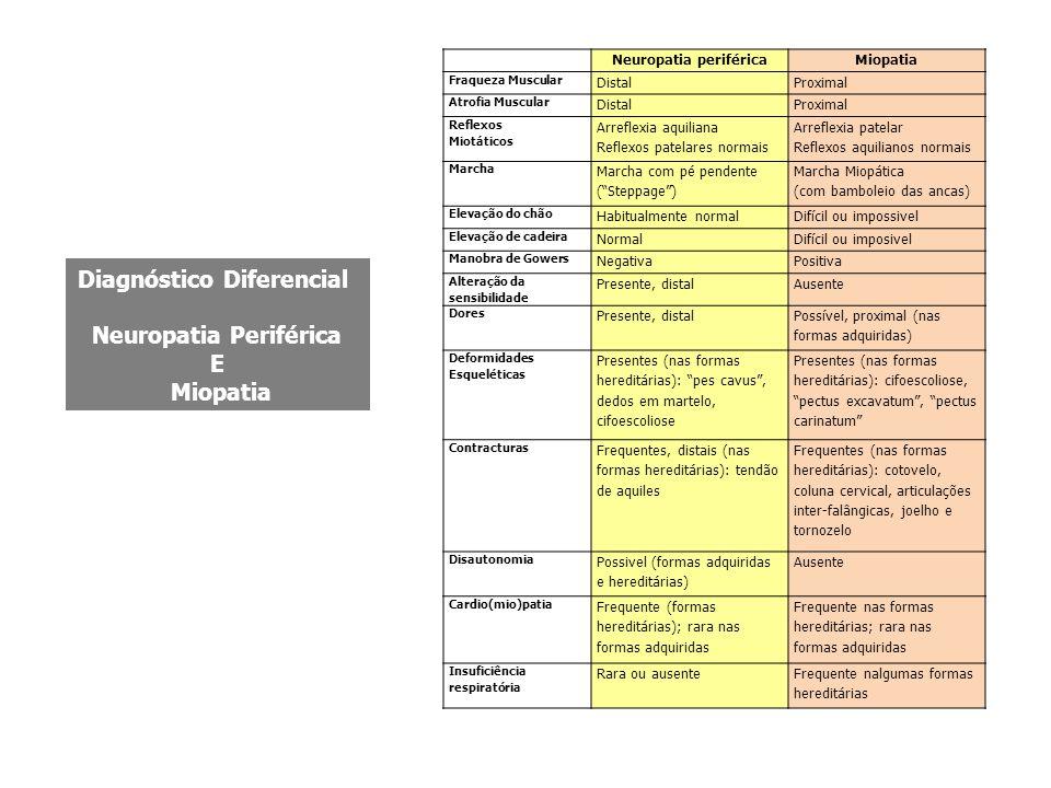 Neuropatia periférica Diagnóstico Diferencial Neuropatia Periférica