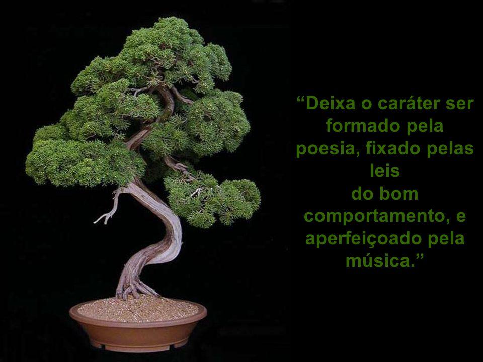 Deixa o caráter ser formado pela poesia, fixado pelas leis do bom comportamento, e aperfeiçoado pela música.
