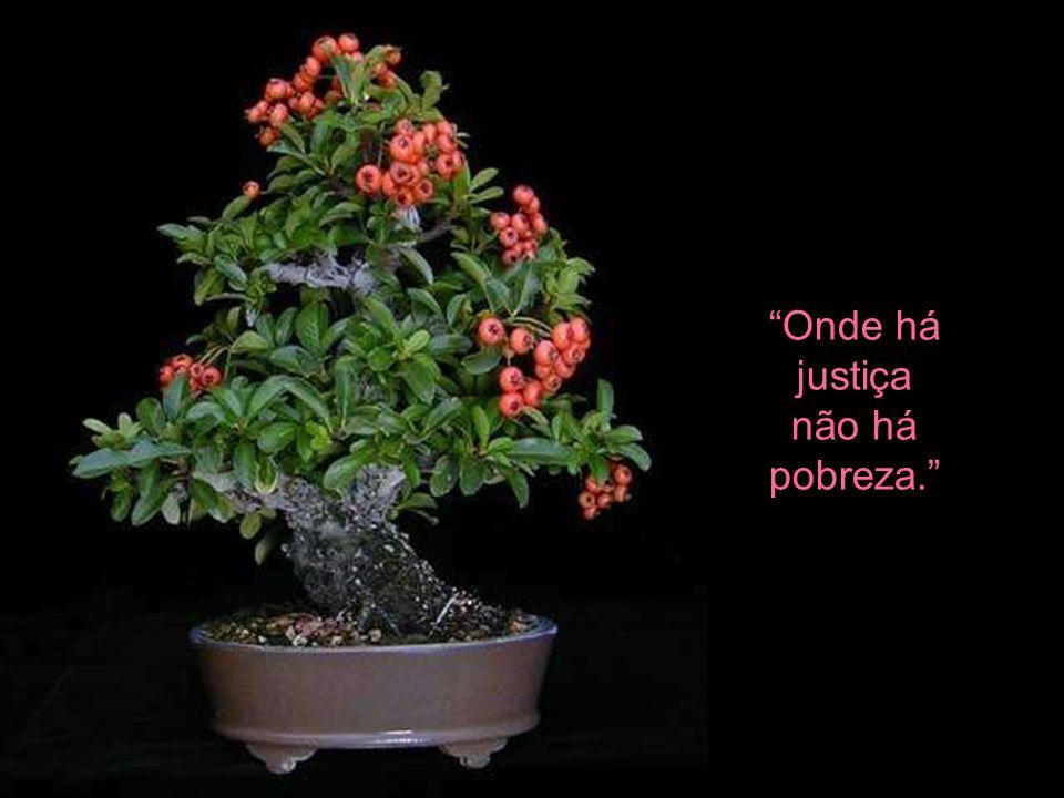 Onde há justiça não há pobreza.