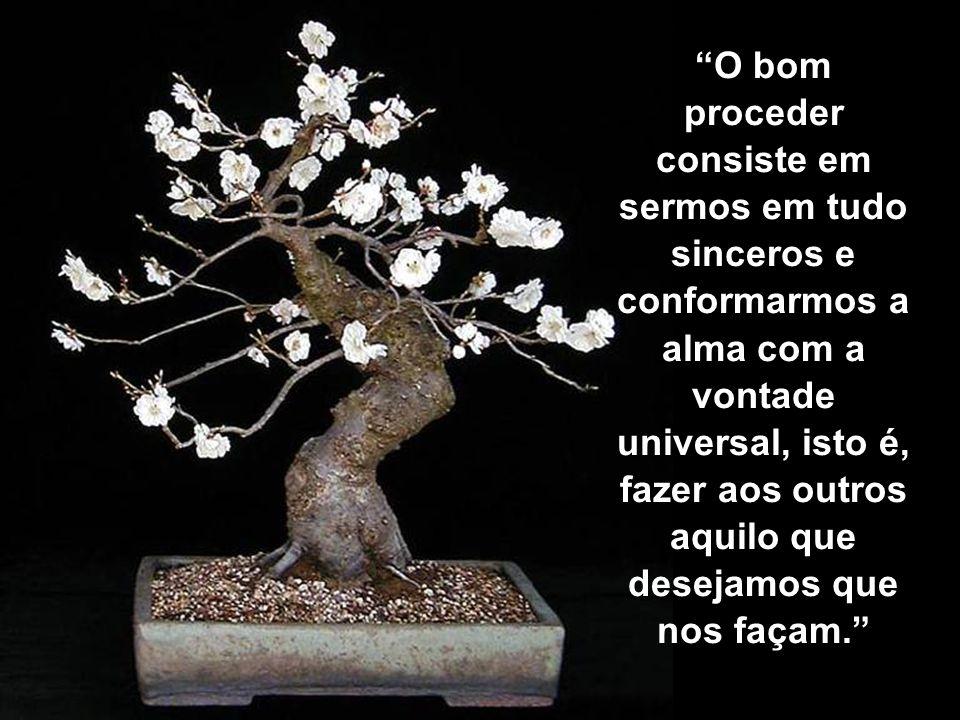 O bom proceder consiste em sermos em tudo sinceros e conformarmos a alma com a vontade universal, isto é, fazer aos outros aquilo que desejamos que nos façam.
