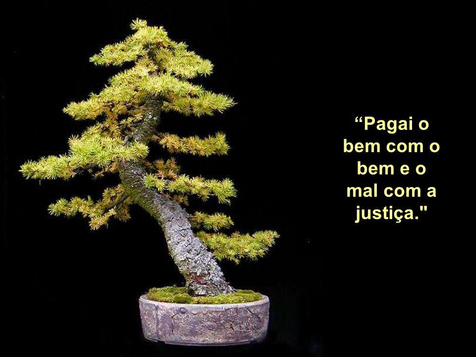 Pagai o bem com o bem e o mal com a justiça.