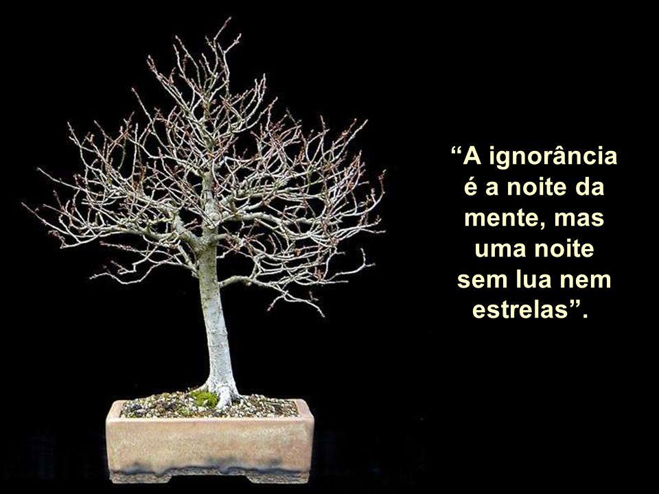 A ignorância é a noite da mente, mas uma noite sem lua nem estrelas .