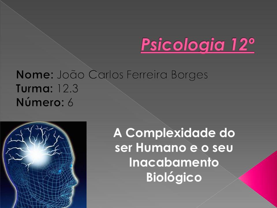 Nome: João Carlos Ferreira Borges Turma: 12.3 Número: 6