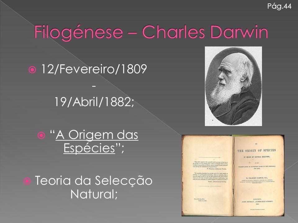 Filogénese – Charles Darwin