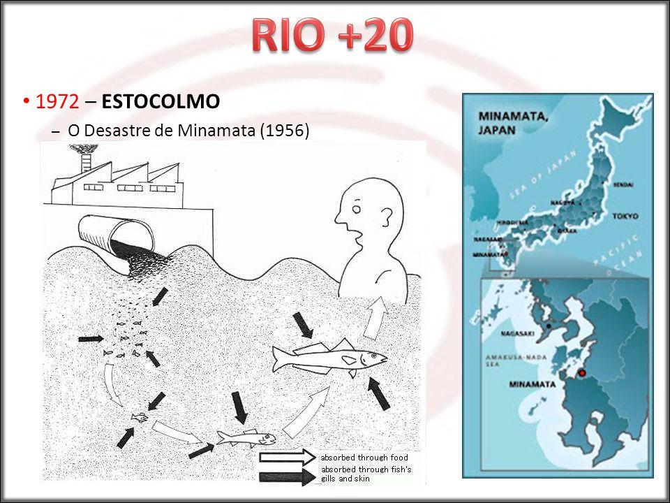 RIO +20 1972 – ESTOCOLMO O Desastre de Minamata (1956)