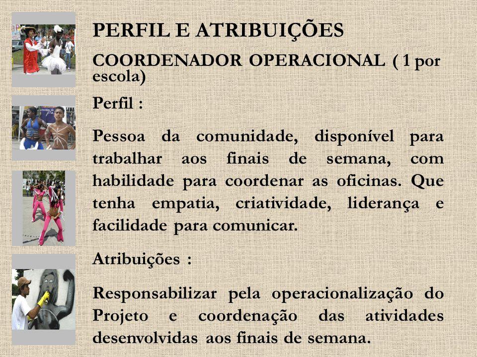 PERFIL E ATRIBUIÇÕES COORDENADOR OPERACIONAL ( 1 por escola) Perfil :