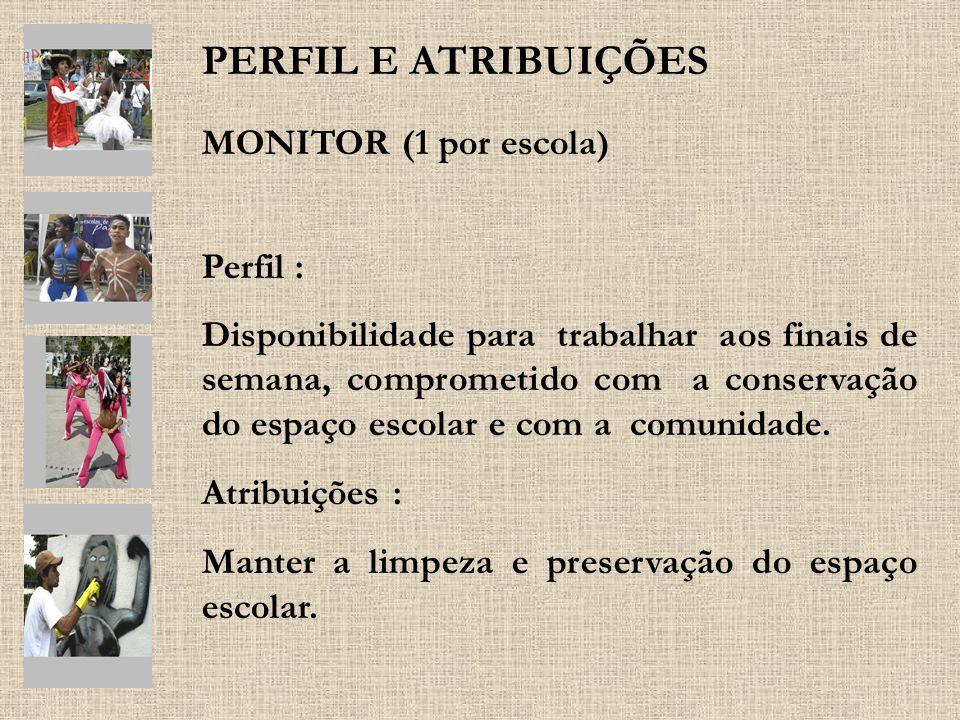 PERFIL E ATRIBUIÇÕES MONITOR (1 por escola) Perfil :