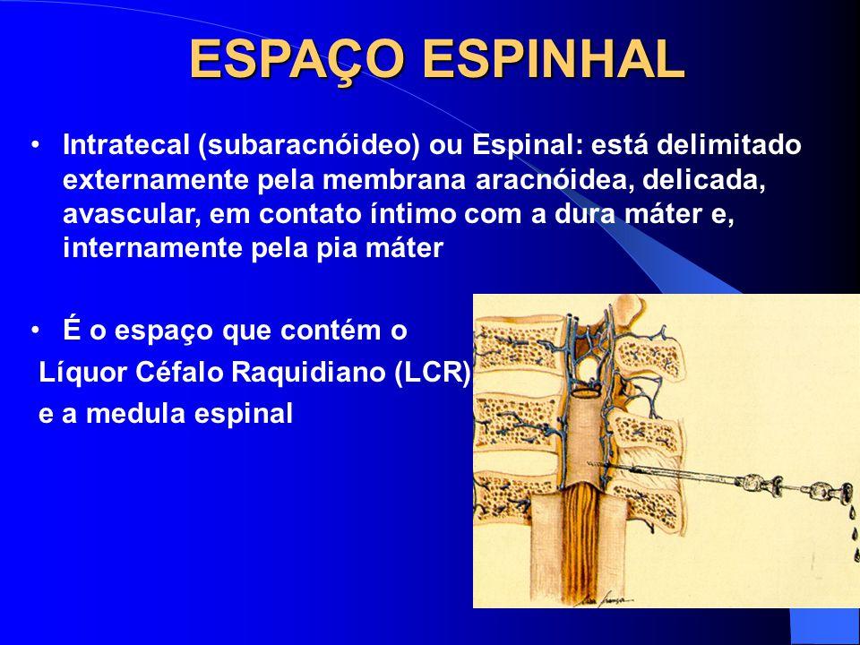 ESPAÇO ESPINHAL