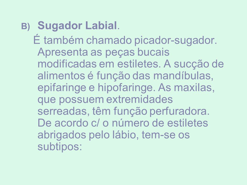 Sugador Labial.