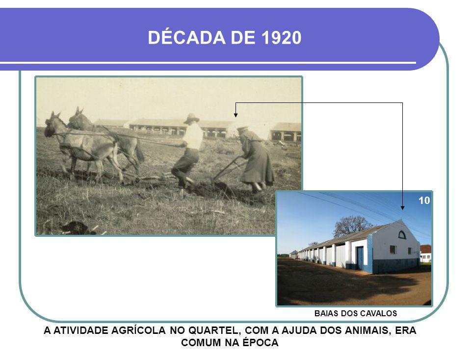 DÉCADA DE 1920 10. BAIAS DOS CAVALOS.