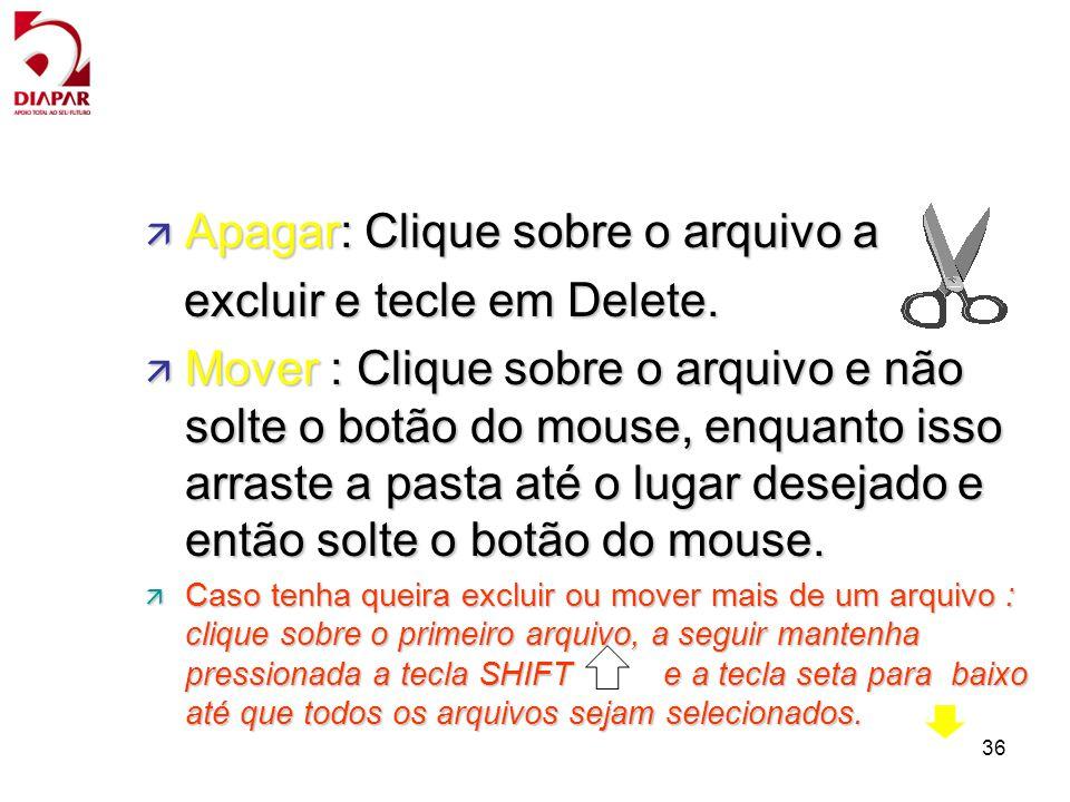 Apagar: Clique sobre o arquivo a excluir e tecle em Delete.