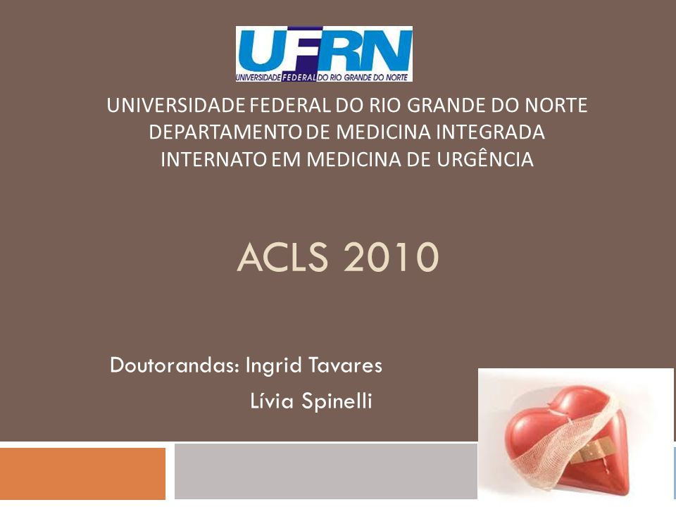 Doutorandas: Ingrid Tavares Lívia Spinelli